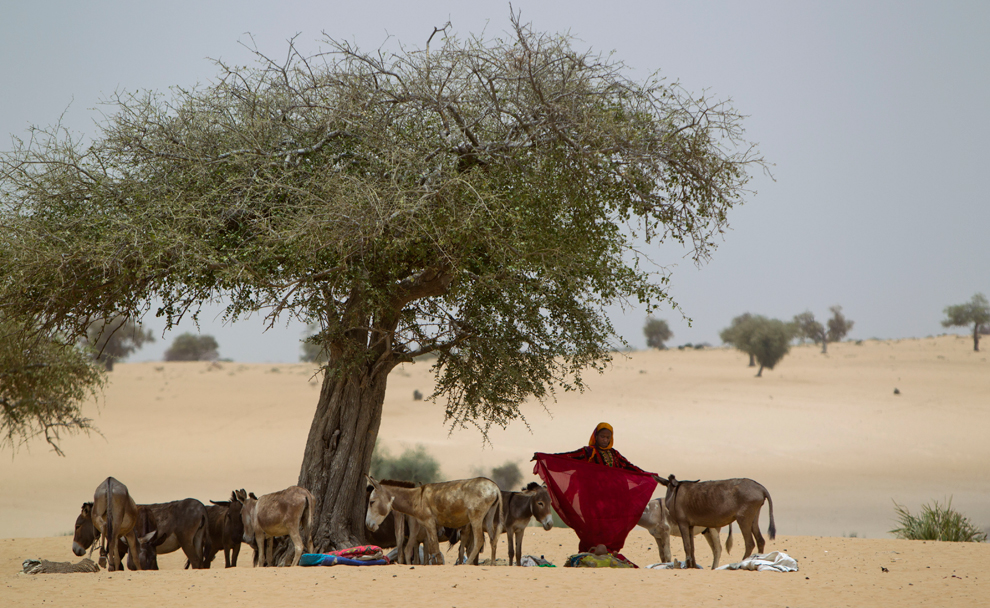 droughts in chad essay Managing vulnerability to drought and enhancing livelihood resilience in sub-saharan africa: technological, institutional and policy options.